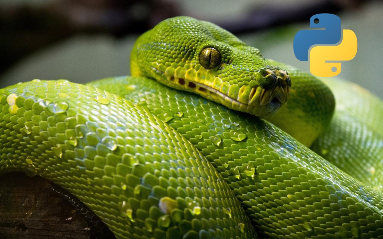 Introducción a Python: Primeros pasos y variables